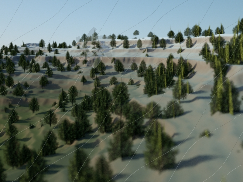 Terrain With Trees
